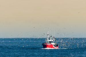Fishery Boat, Predictive Analytics